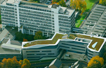 University-of-Brighton-Green-Roof